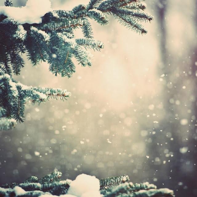 iPad Wallpapers Download 2012 Christmas Winter iPad Wallpapers 640x640