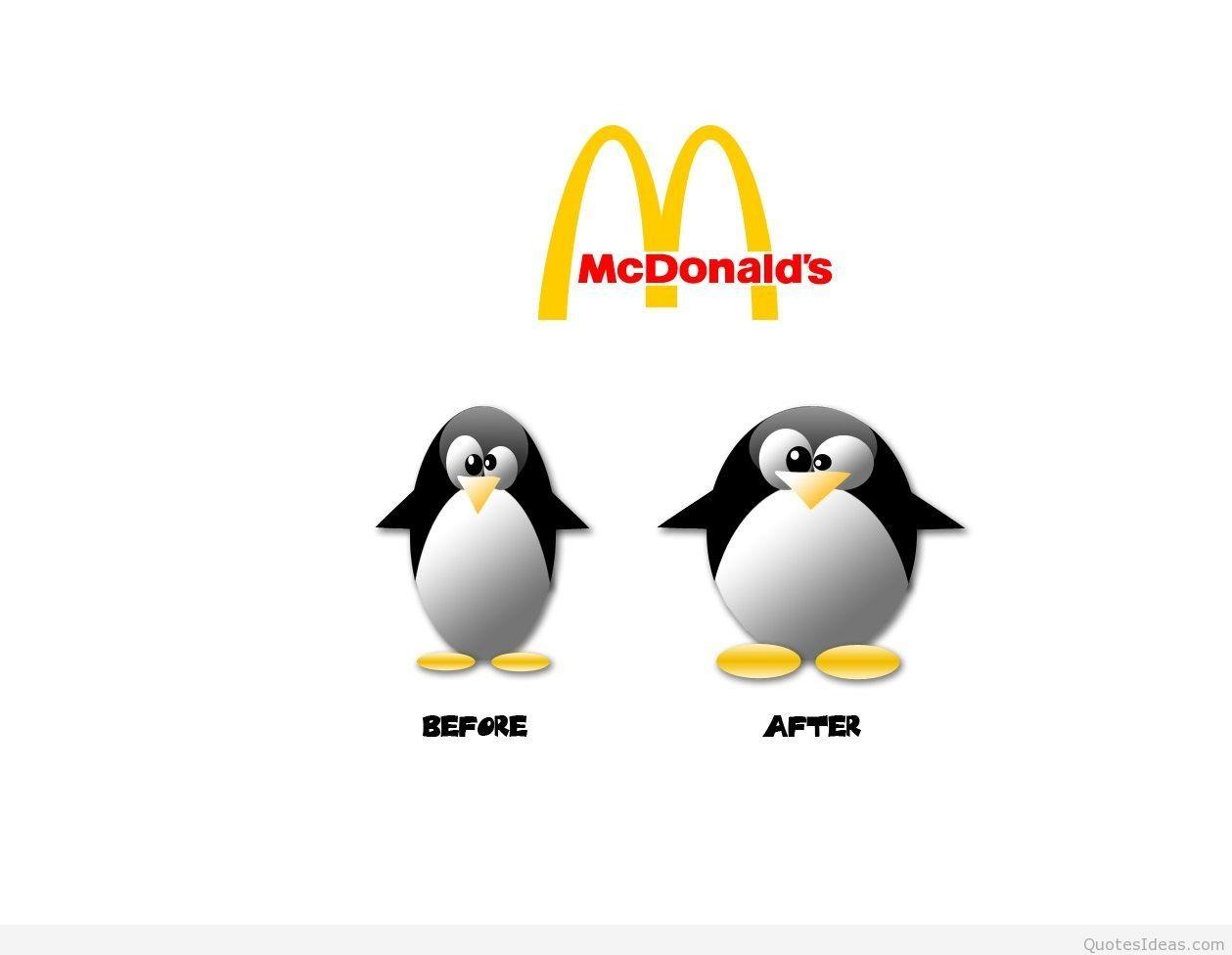 Penguin Fun wallpaper 1259x976