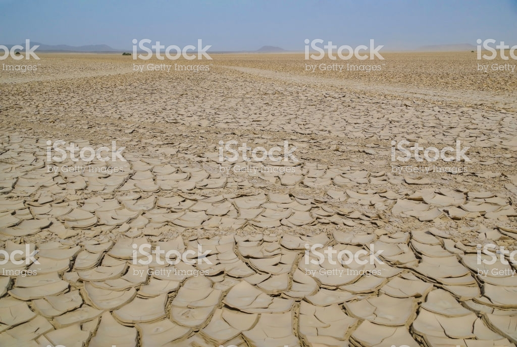 Vast Expanses Of Dry Cracked Land Dry Terrain Cracked Ground 1024x688