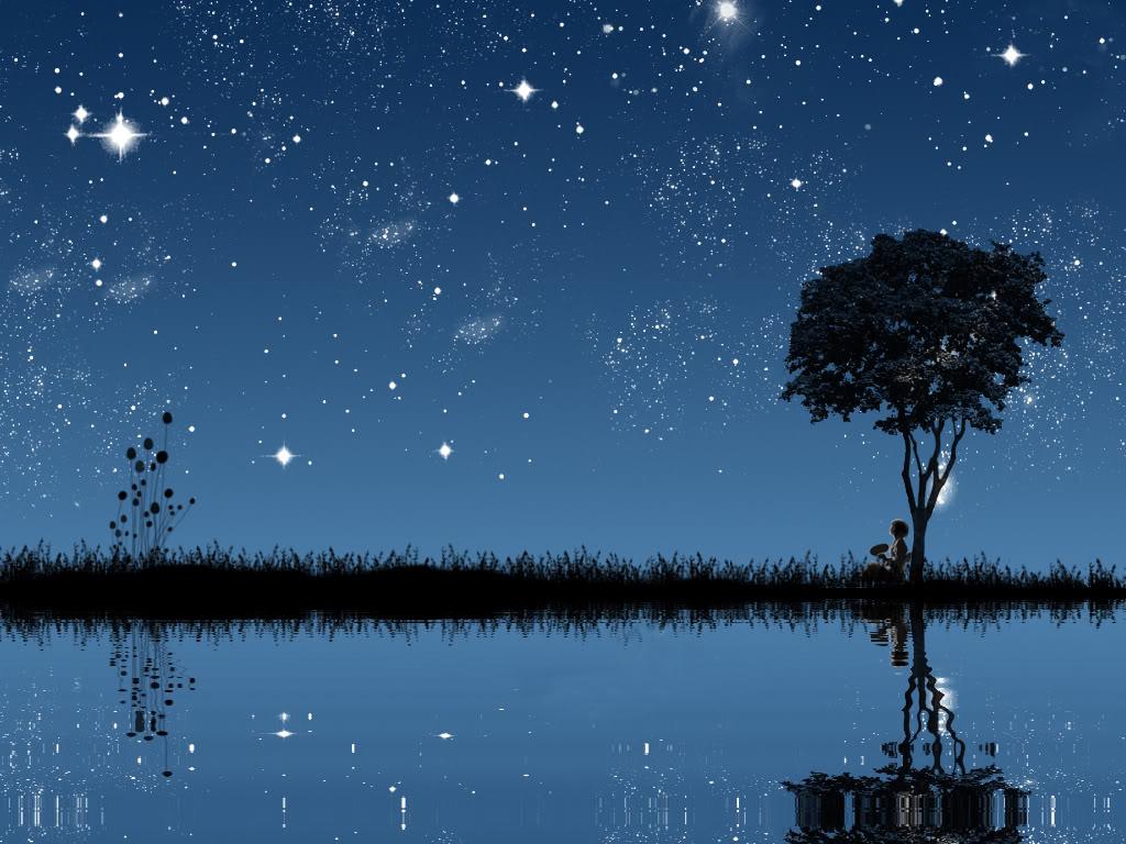 Starry Night Sky wallpaper   ForWallpapercom 1024x768