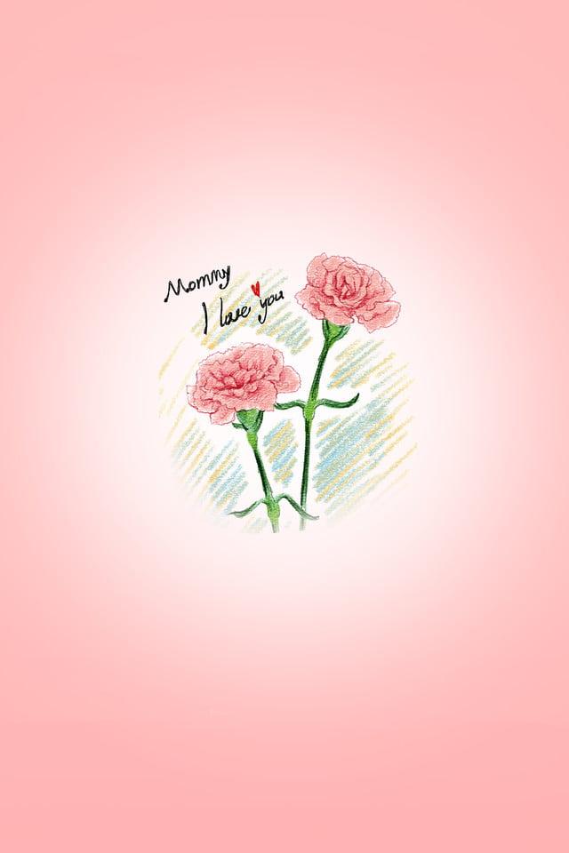 Carnation Flower Phone Wallpaper Mobile Phone Poster Phone Lock 640x960