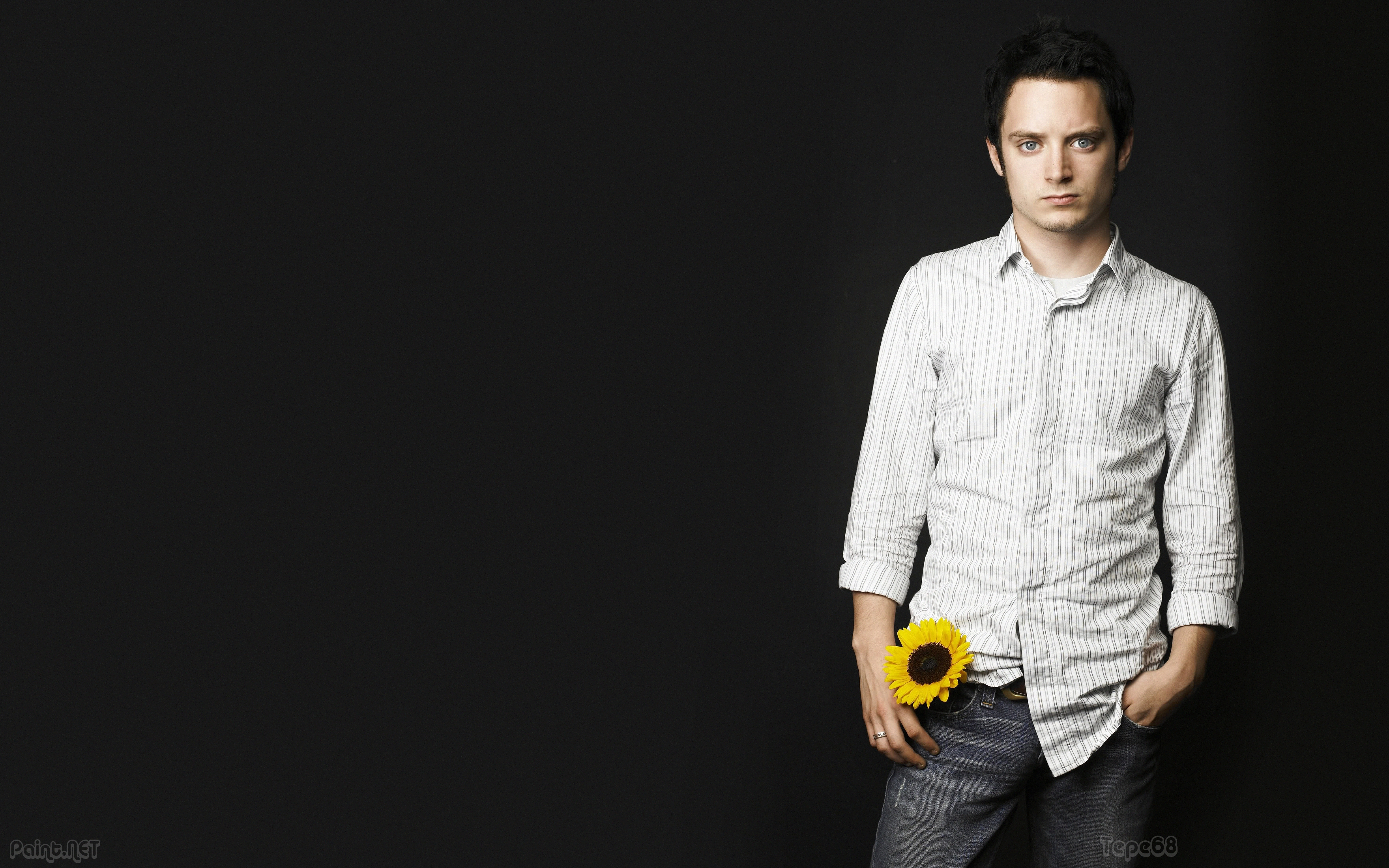 Elijah Wood Wallpapers High Resolution and Quality Download 3520x2200