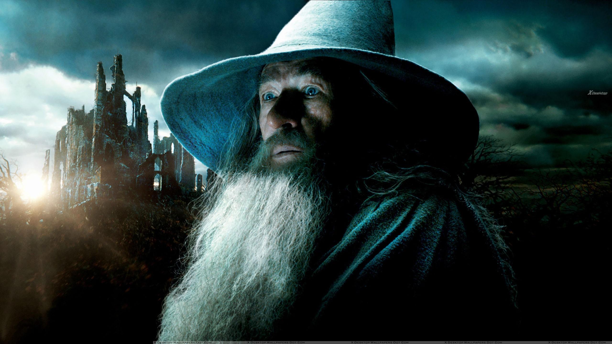 Ian McKellen With Long Beard In The Hobbit The Desolation Of 2560x1440