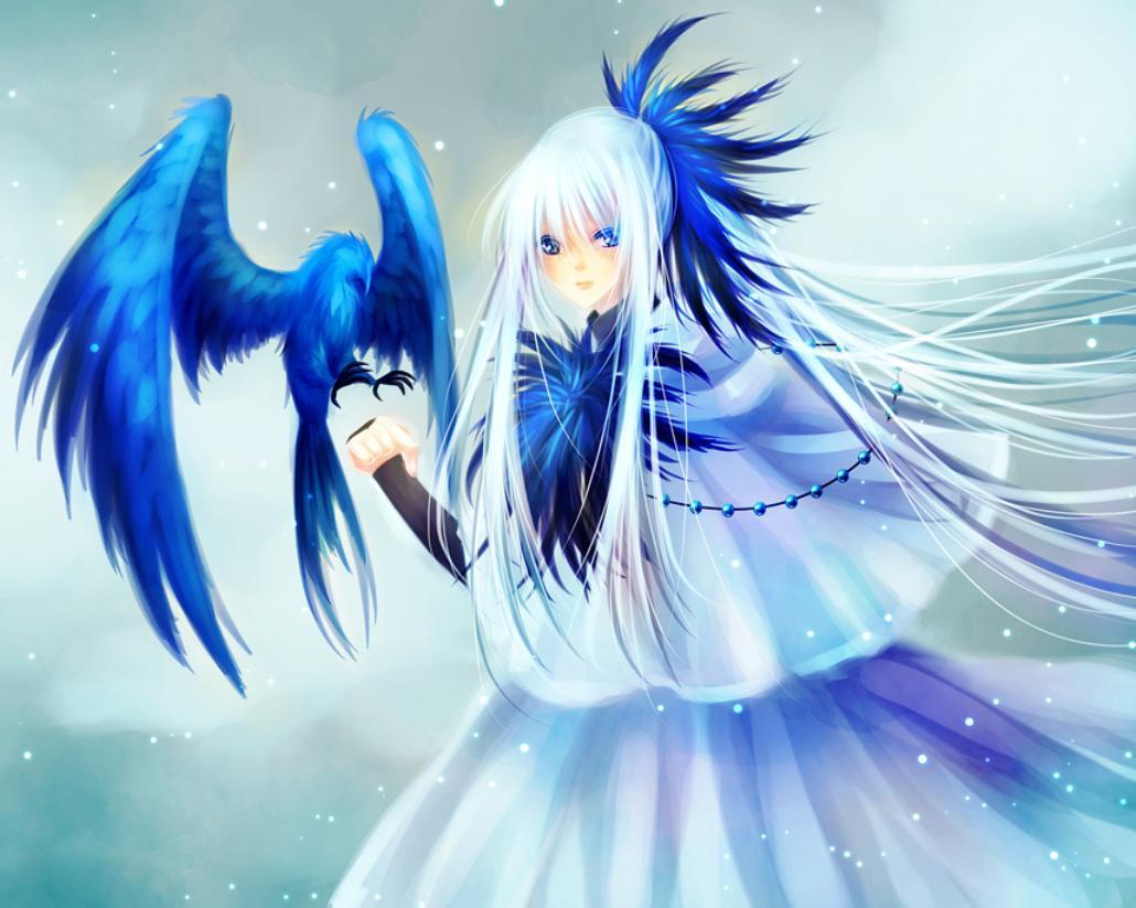 BLUE BIRD WALLPAPER   137908   HD Wallpapers   [WallpapersInHQcom] 1030x823