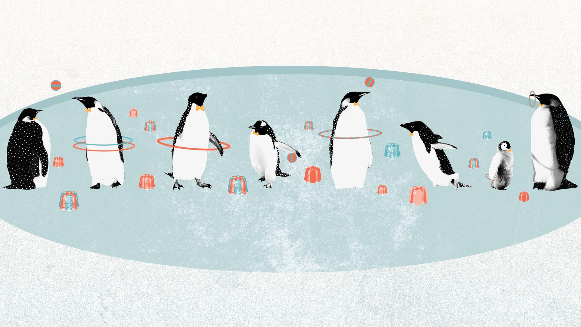download Funny Penguins Cartoon HD Wallpaper Wallpaper Stream 1920x1080