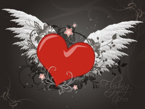 The heart with wings Wallpaper 500x375