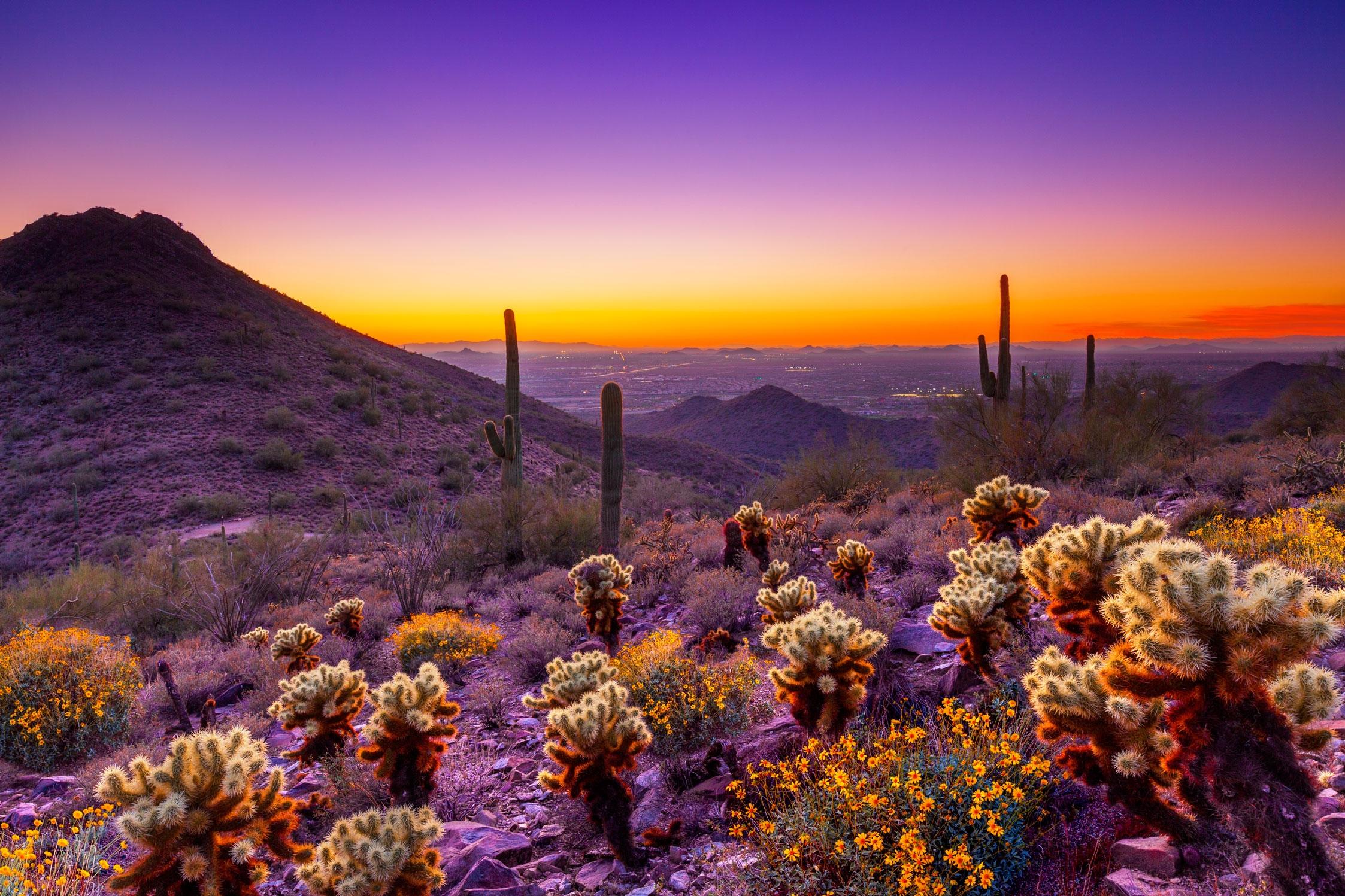 Desert sunset Photo courtesy of Scottsdale Convention Visitors 2246x1497