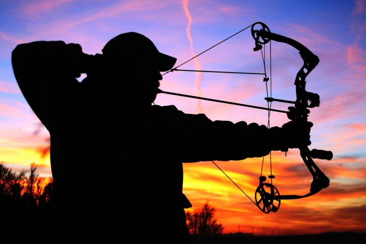 HUNTING archery archer bow arrow hunting weapon wallpaper background 736x491