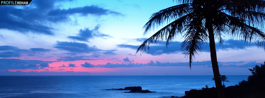 Beautiful Sunset and Palm Tree Facebook Cover Preview 850x315