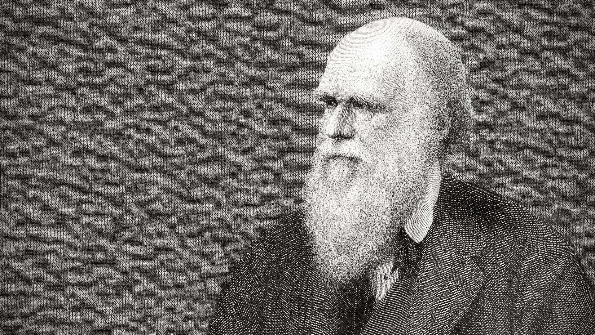 Biography Charles Darwin Natural Selection Vision 1920x1080