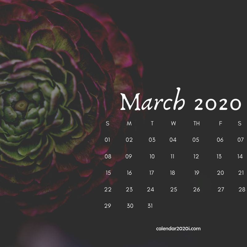March 2020 Floral Calendar Printable in 2019 Calendar wallpaper 800x800