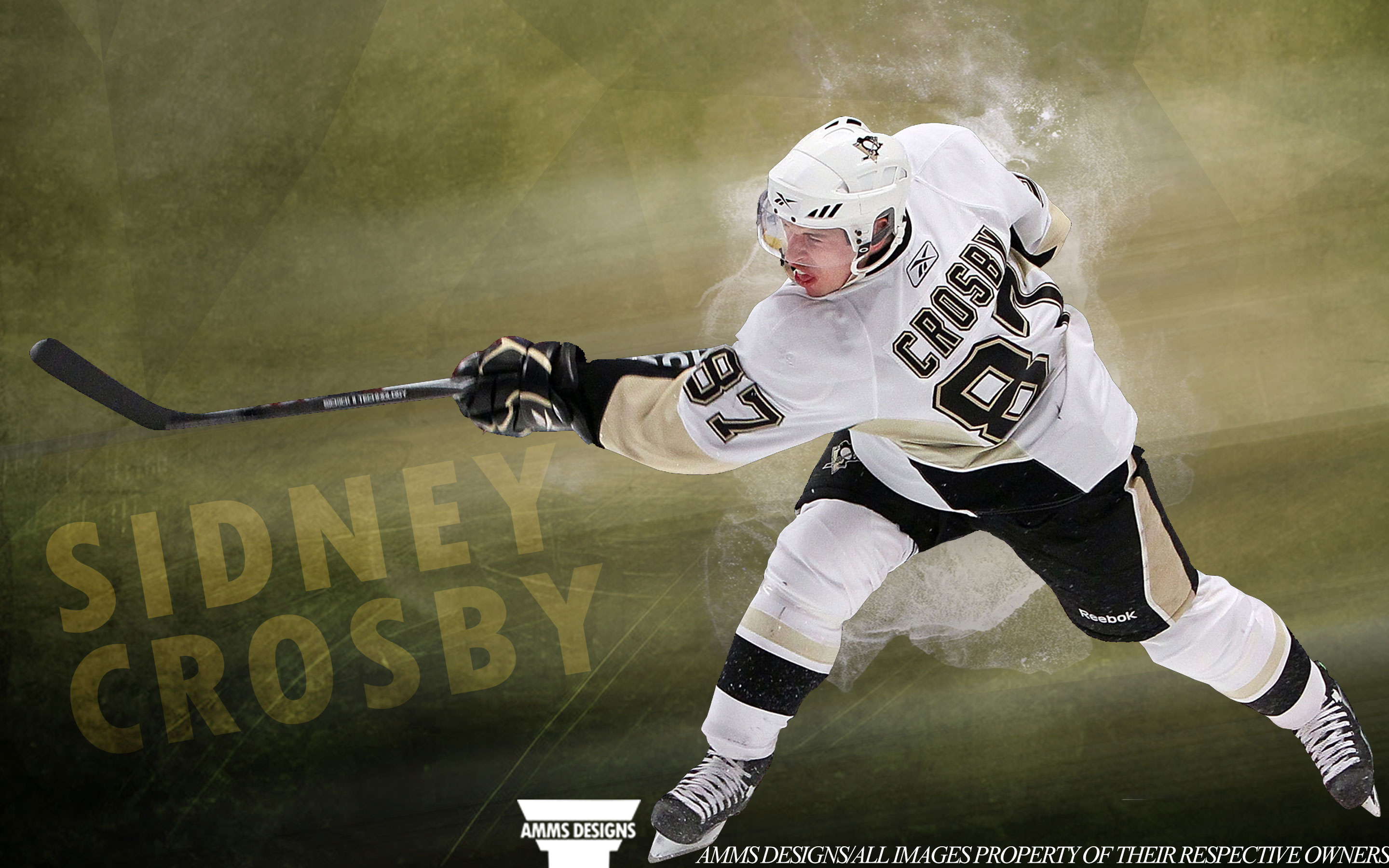 NHL Wallpapers   Sidney Crosby Pittsburgh Penguins 2014 wallpaper 2880x1800
