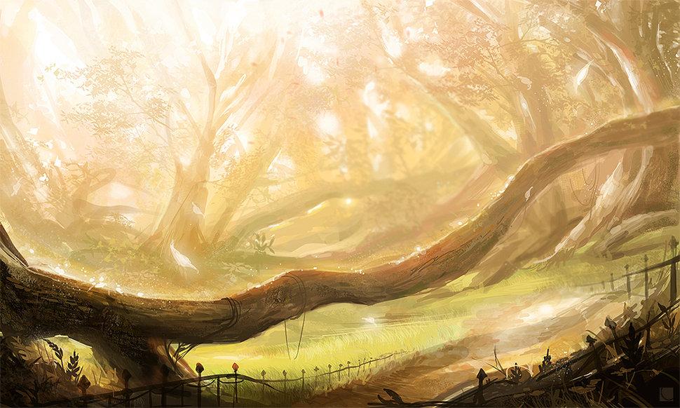 Anime Forest wallpaper   ForWallpapercom 970x582