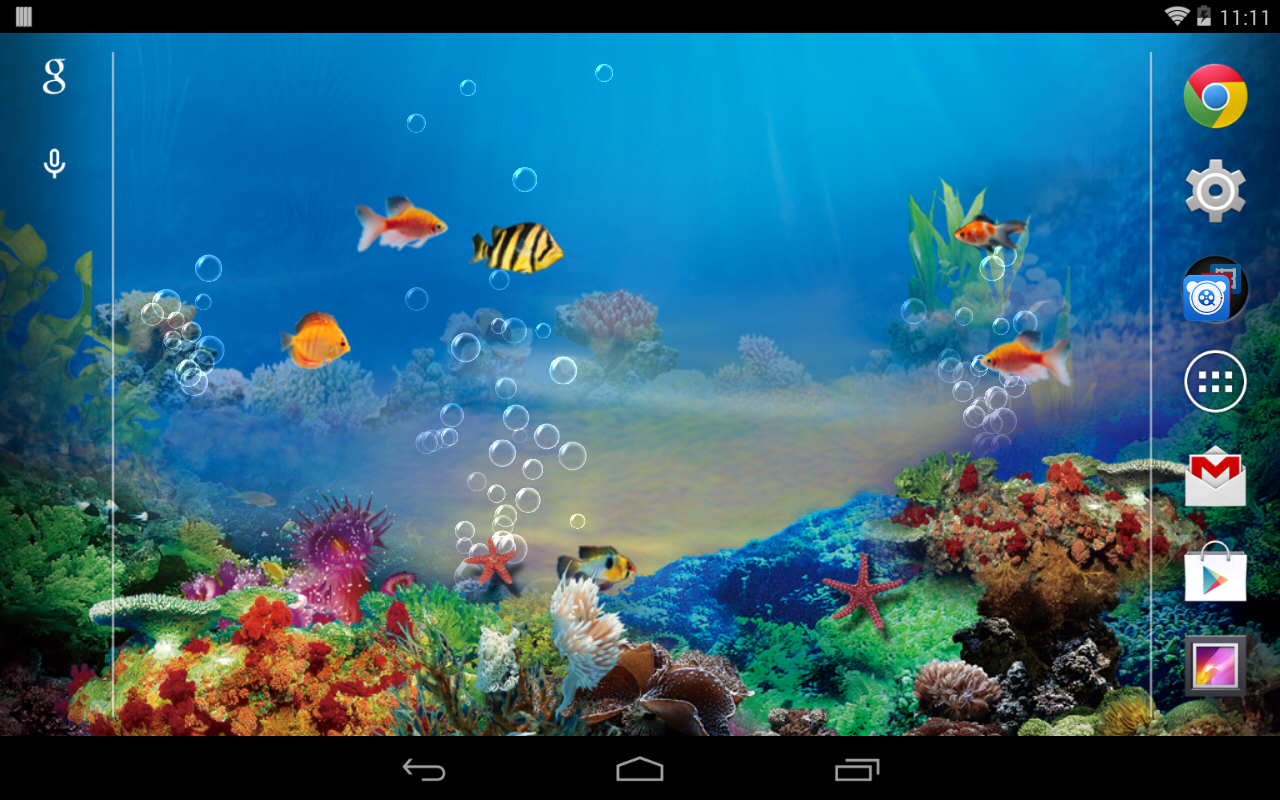 Fish aquarium live wallpaper wallpapersafari for Live fish tank