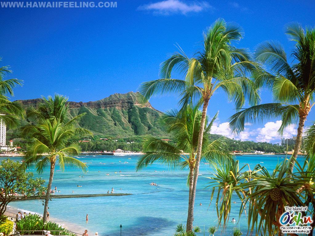 Nature photo wallpaper of hawaii HAWAII feeling 1024x768