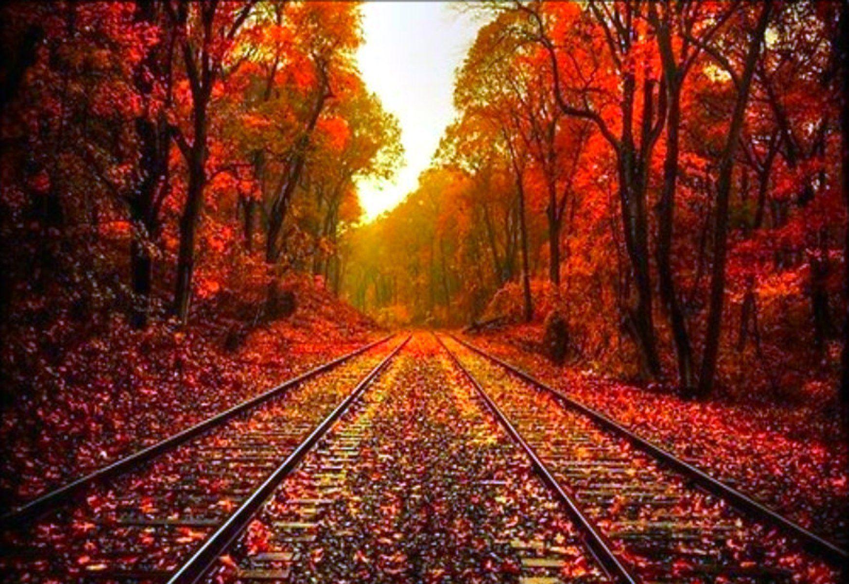 Beautiful Autumn Wallpapers 1745x1200