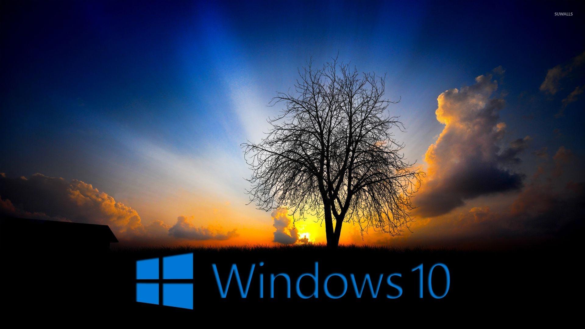 Windows 10 in the twilight wallpaper   Computer wallpapers   48476 1680x1050