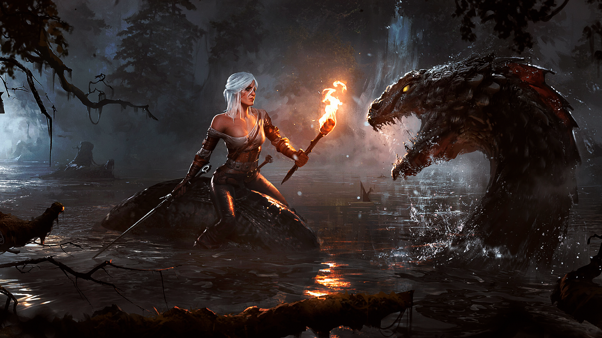 The Witcher Ciri Wallpapers HD Desktop and Mobile 1920x1080
