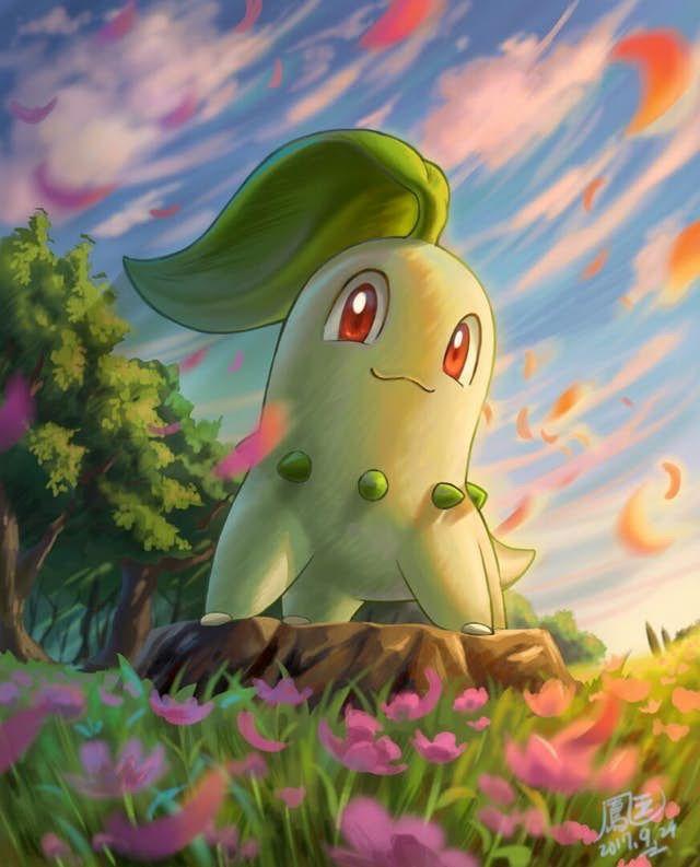 Chikorita Pokemon Pokemon Pokemon starters Pokemon backgrounds 640x793