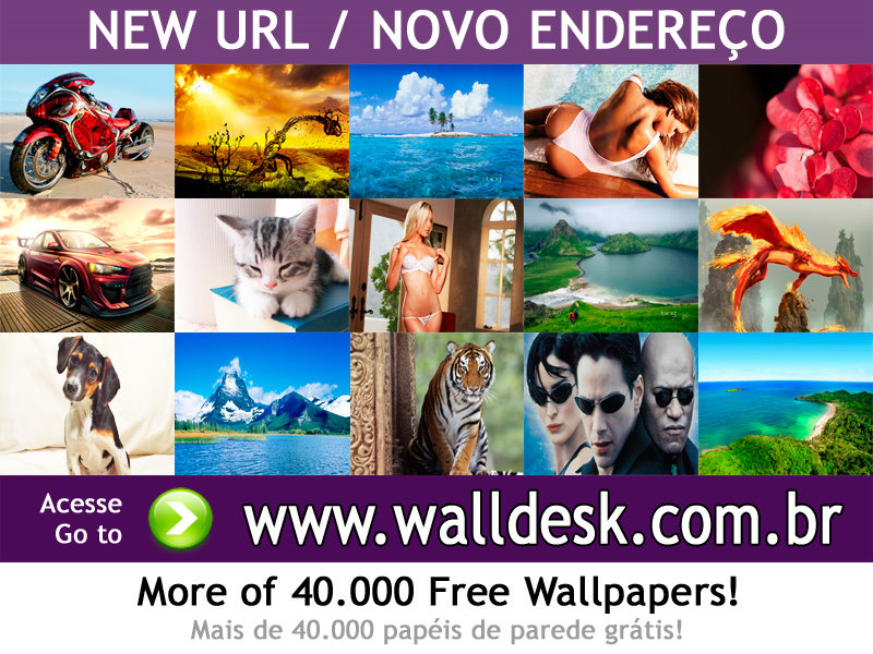 Wallpapers virtual resort spring break 02 photos for PC computer 800x600
