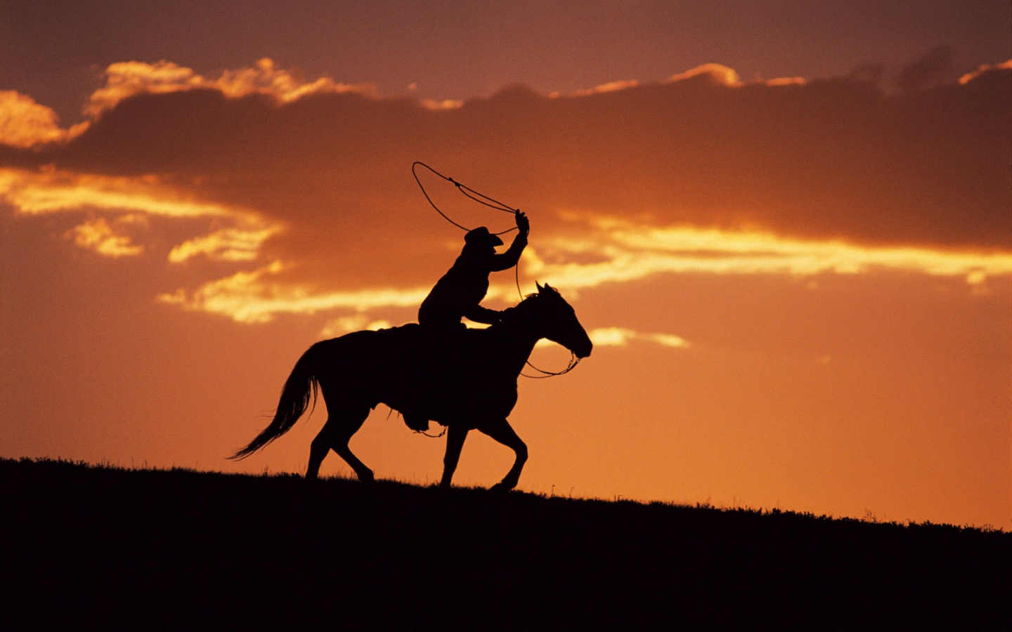 Western Cowboy at Sunset Wallpapers HD Wallpapers 1440x900