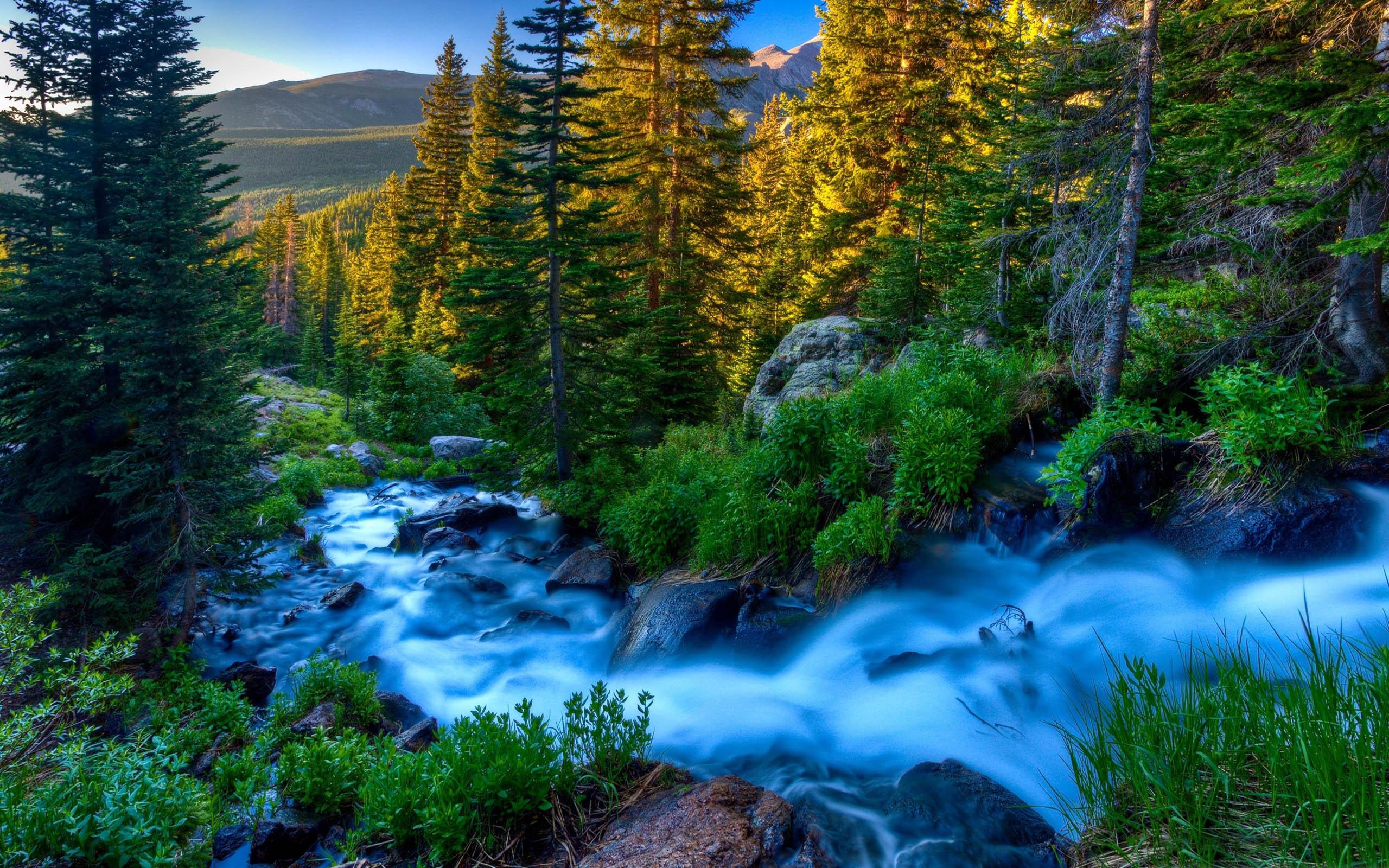 Mountain River Wallpaper 6976383 2560x1600