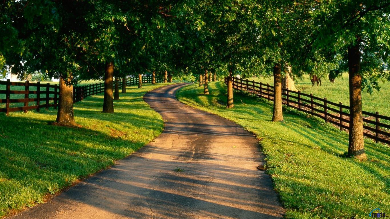 Country road 1366 x 768 Desktop