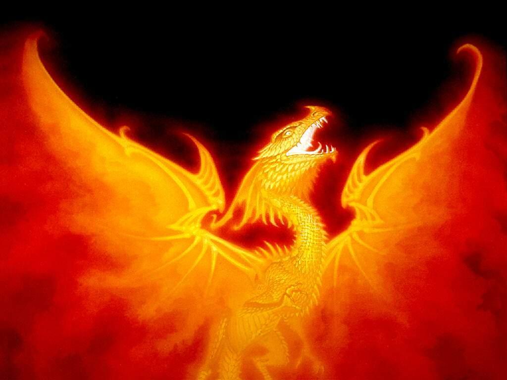 Phoenix Bird 14 Hd Wallpaper Wallpaper 1024x768