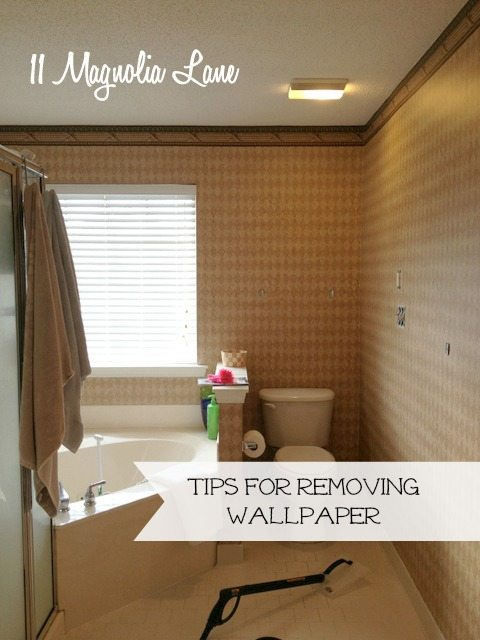 How to Easily Remove Wallpaper Tips to Make it as Painless as 480x640