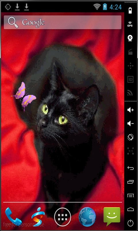 Download Cat And Butterfly Live Wallpaper for your Android phone 480x800