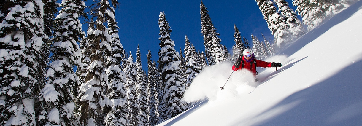 Heli Ski Photo Video Gallery Weekly Heli Ski Photo Gallery 1220x425