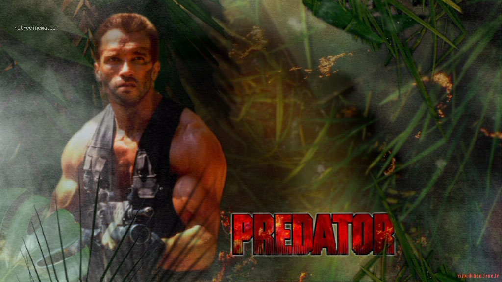 Alien Vs Predator Wallpaper Hd Predator Movie Wallpap...