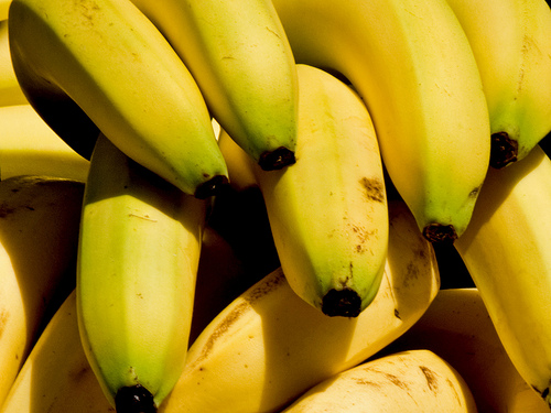 yellow banana background pattern Flickr   Photo Sharing 500x375