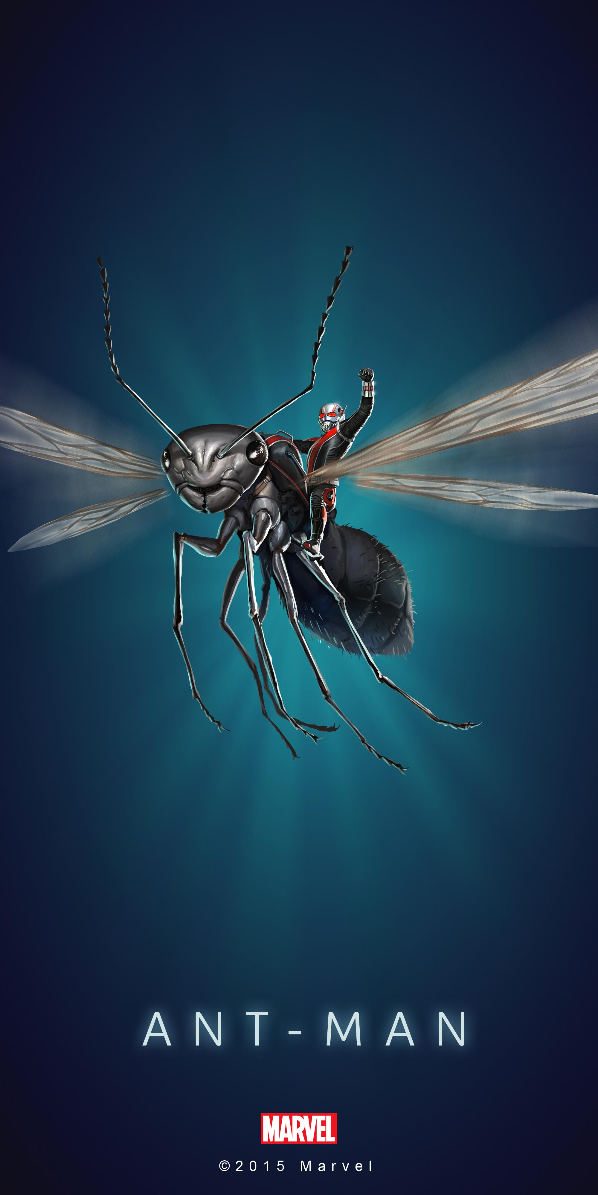Ant Man Wallpaper 03 DOWNLOAD A HI RES VERSION HERE 2000x3997