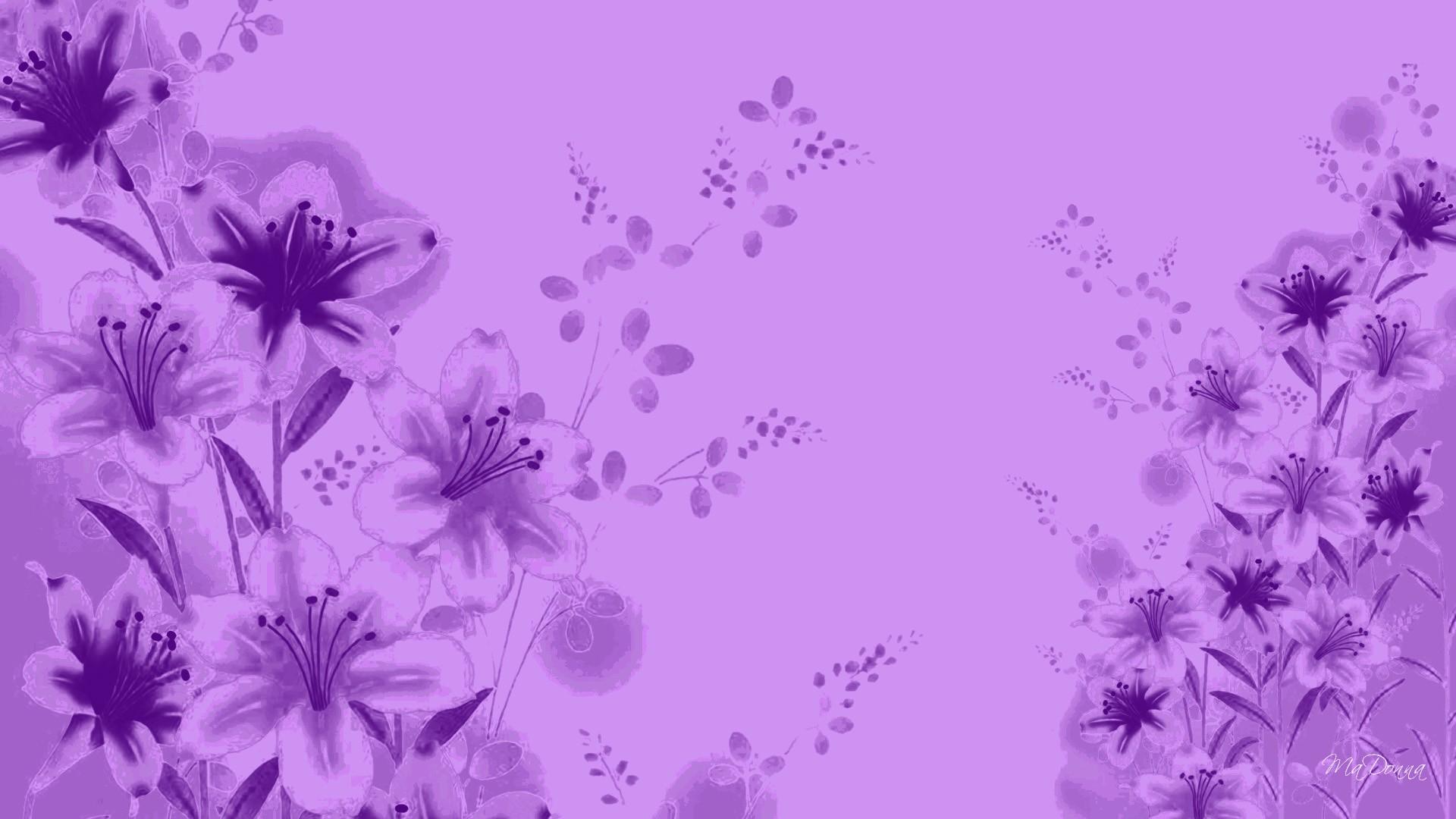 Lavender Color Wallpaper images 1920x1080