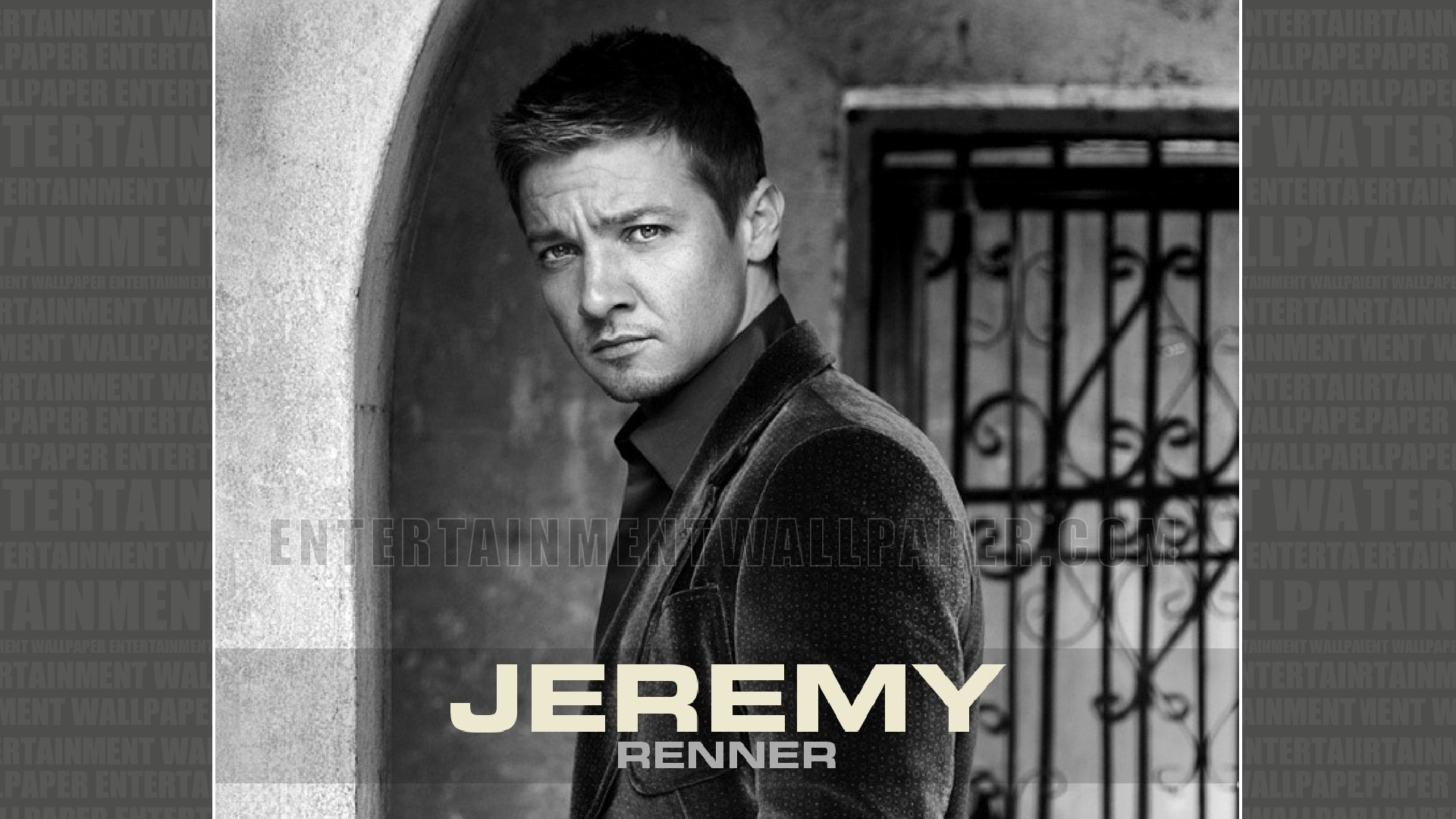 Jeremy Renner Wallpapers and Background Images   stmednet 1920x1080