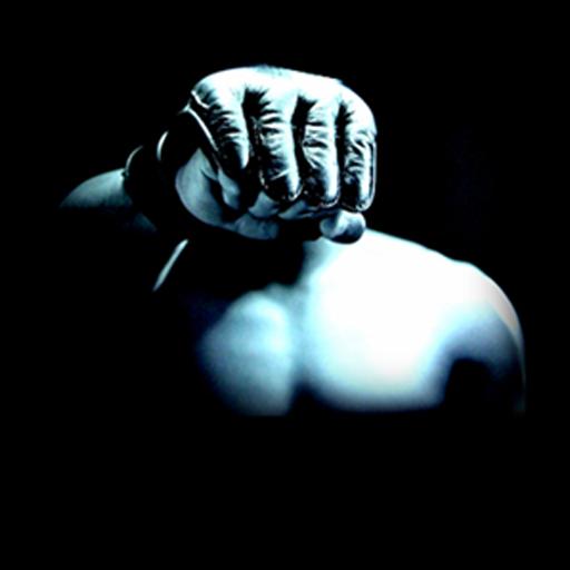 MMA IPhone Wallpaper