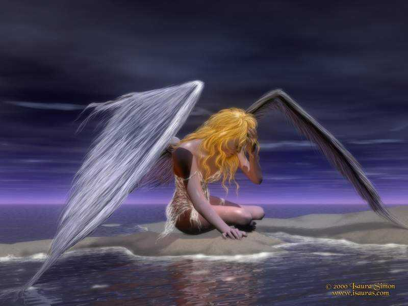Fallen Angel 800x600