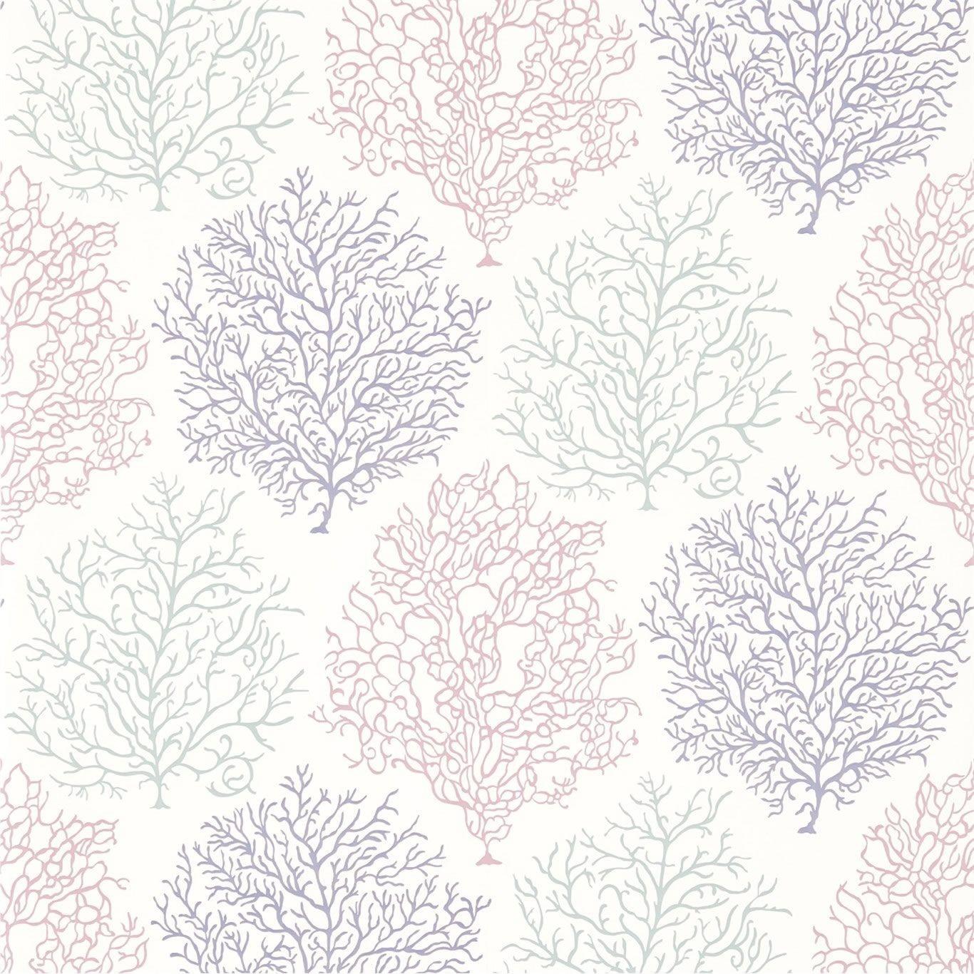 Mauve Wallpaper Wallpapersafari HD Wallpapers Download Free Images Wallpaper [1000image.com]