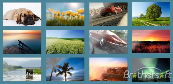 Download Wallpapers from MSN Wallpapers from MSN Beta Download 588x285