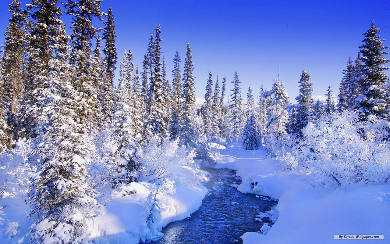 Wallpaper   Nature wallpaper   Winter Wonderland 10 1280x800