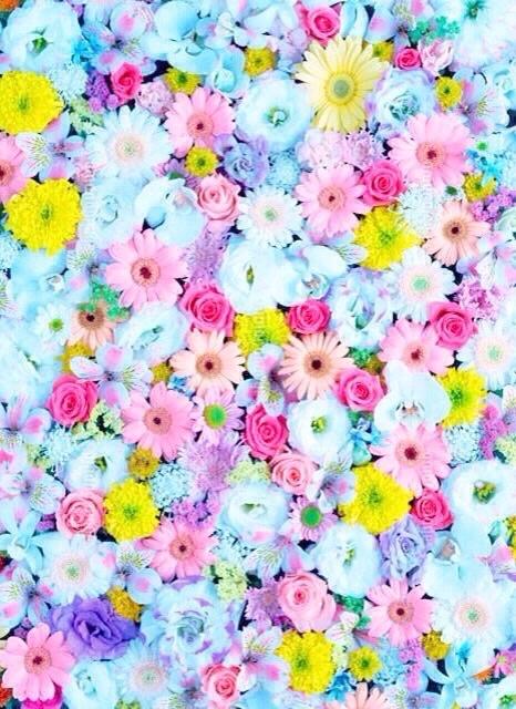 Purple Flowers Tumblr Iphone Wallpaper