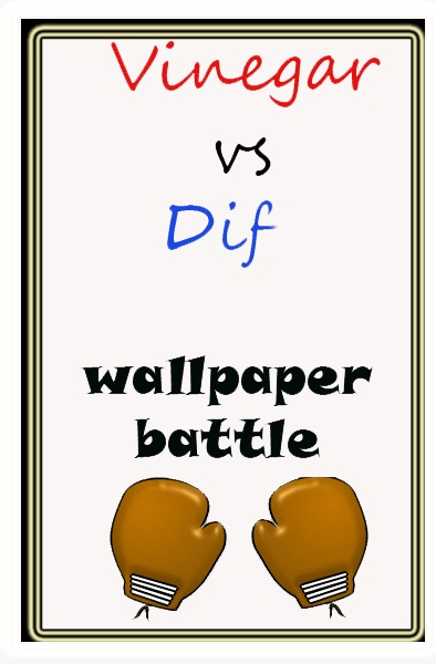 vinegar and water vs Dif wallpaper removal solution 394x600