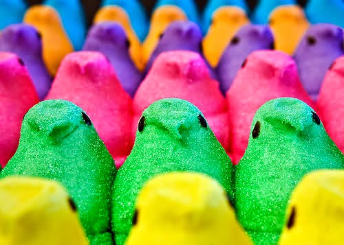 Peeps Candy Wallpaper I gave up candy for lent 500x357