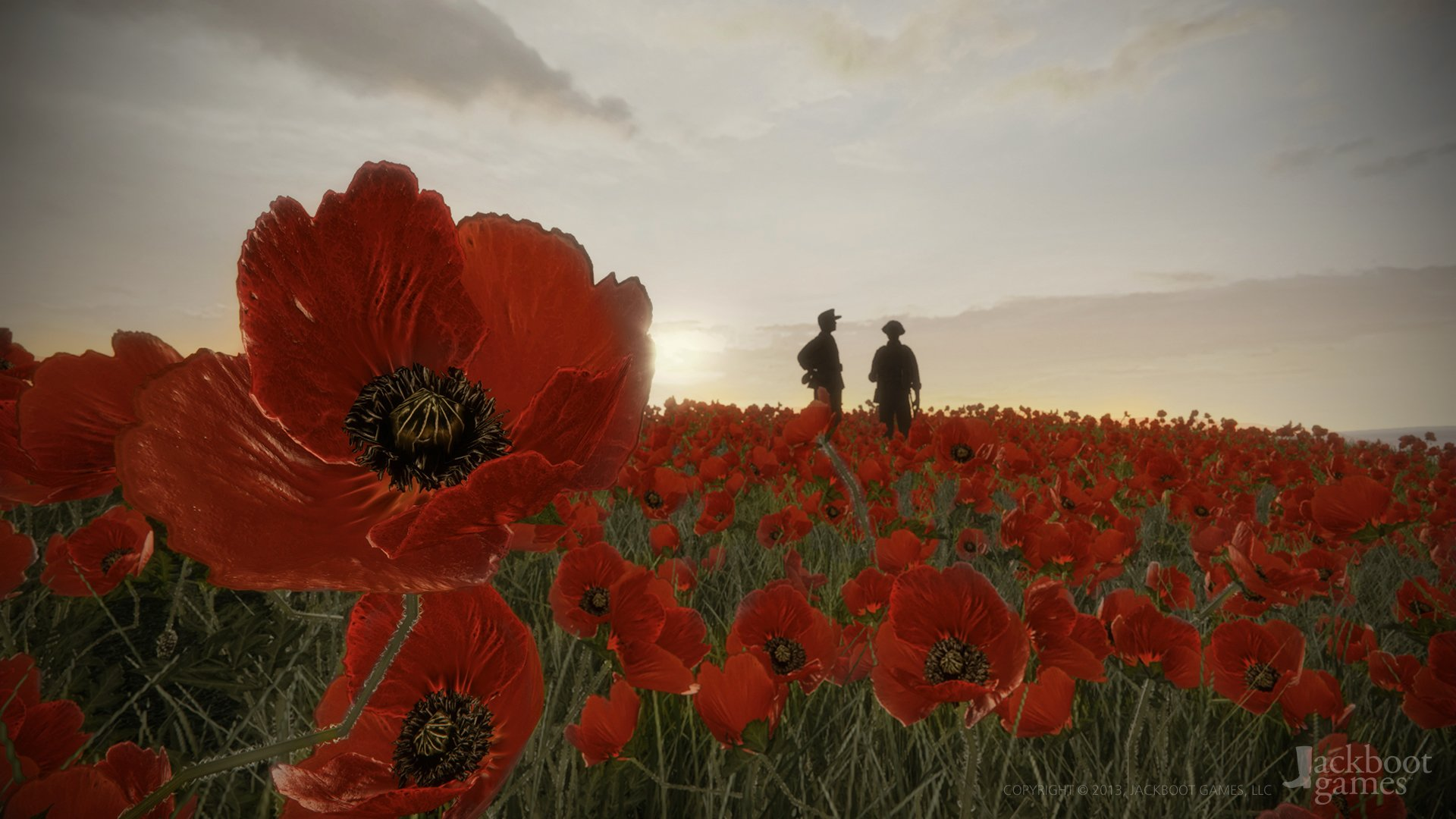 Remembrance Day Poppy Wallpapers  X