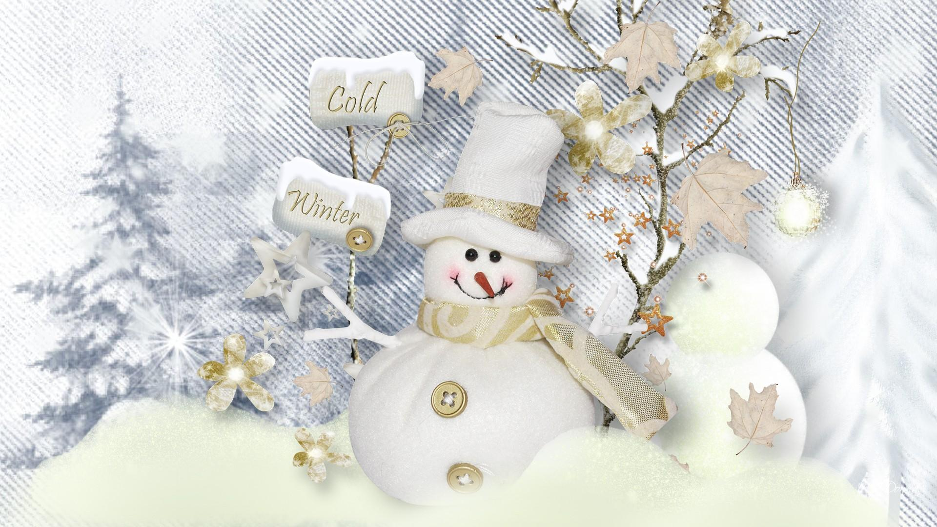 Winter Snowman Wallpapers 1920x1080