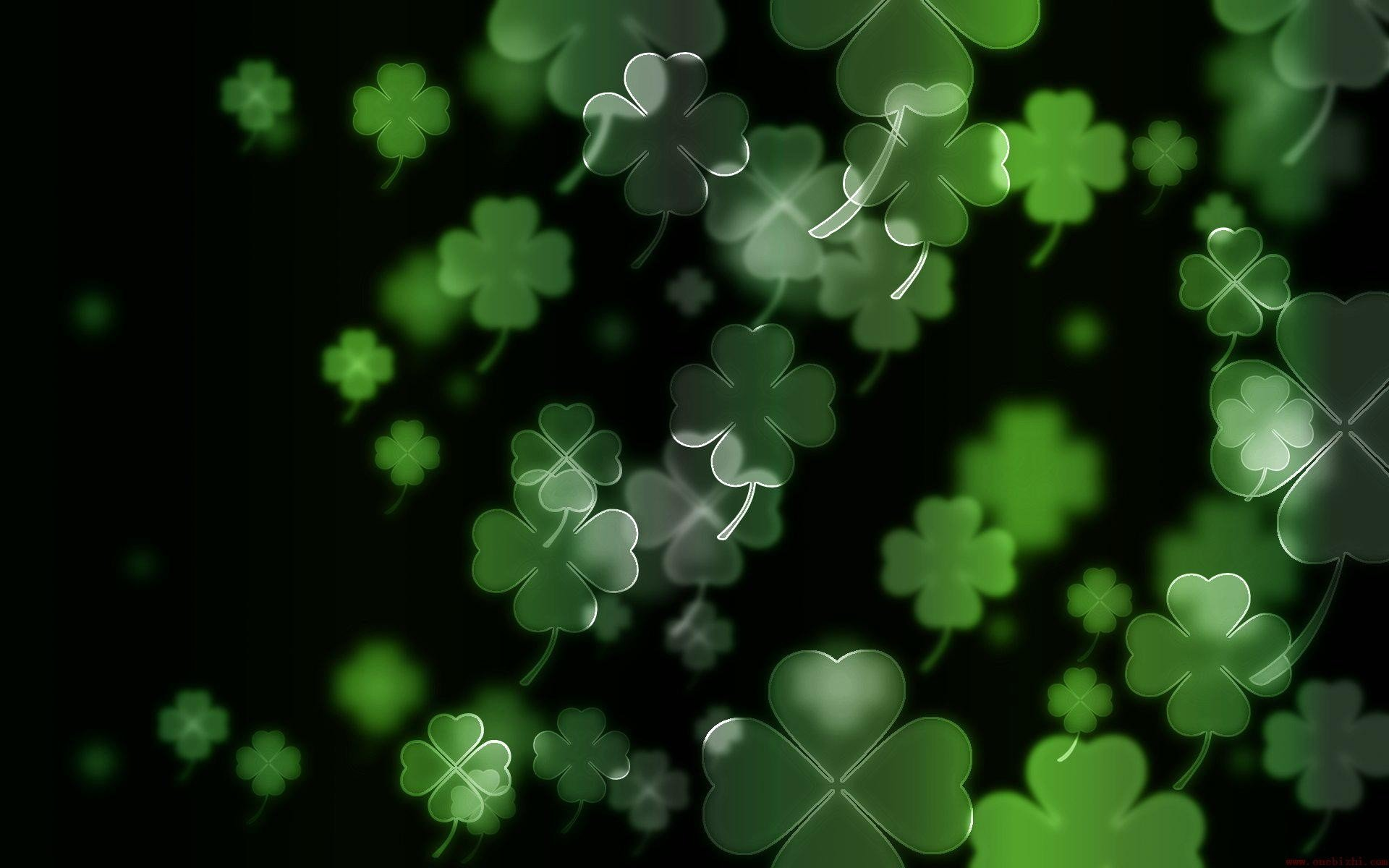 luck irish four leaf clover Clovers wallpaper background 1920x1200