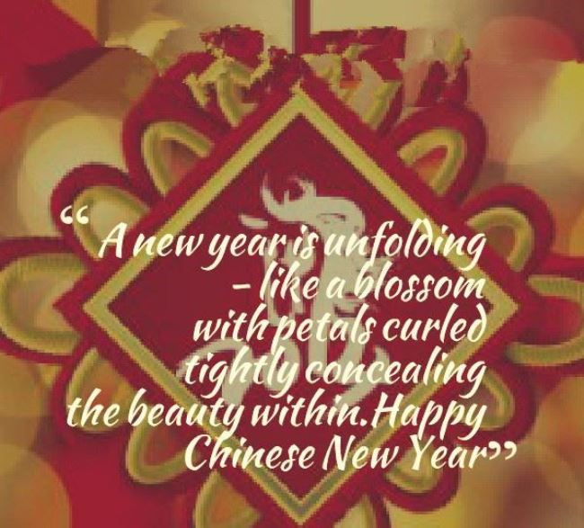 Happy Chinese New Year Wishes Messages Wallpapers 650x587