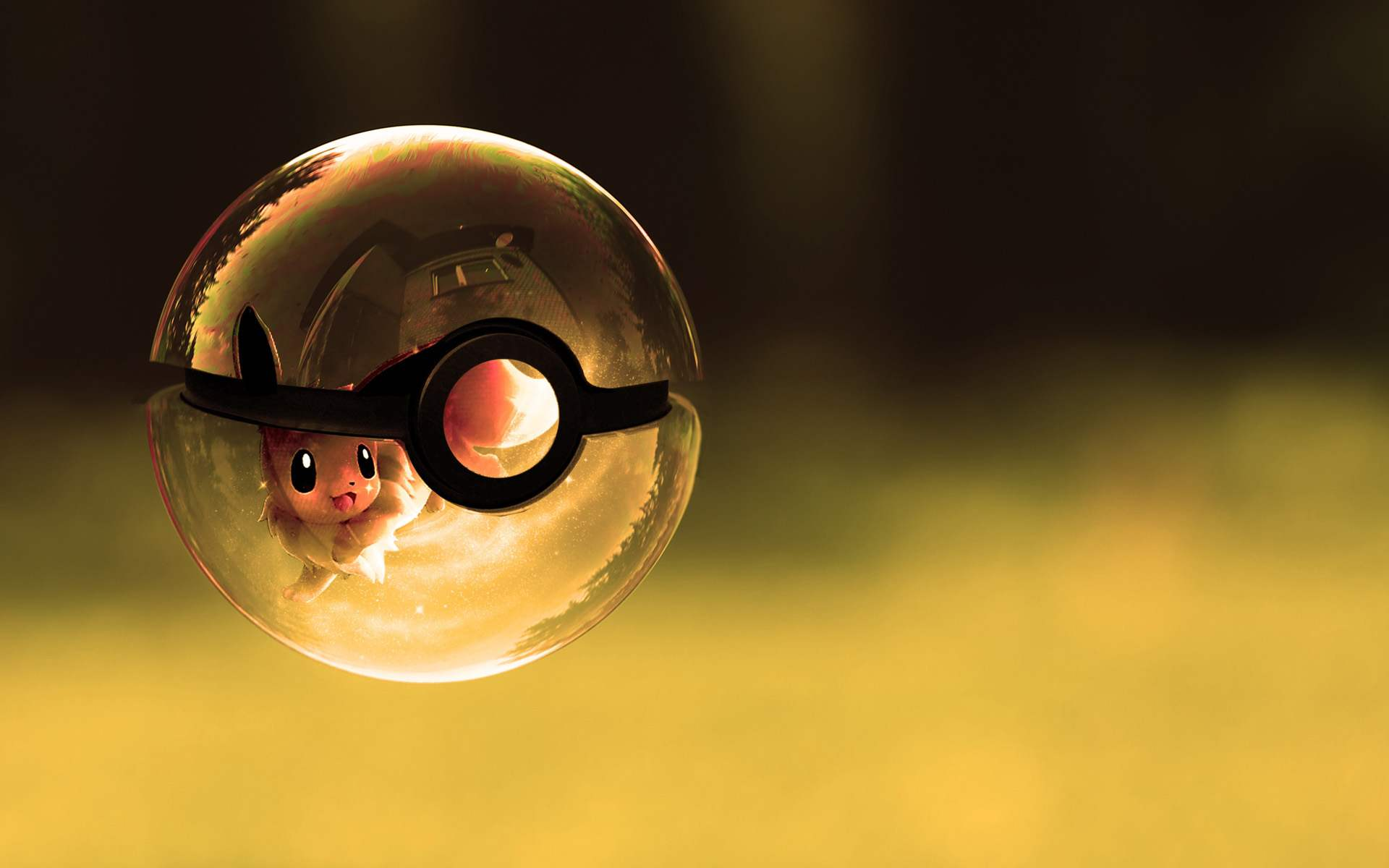 Eevee Poke Ball Pokemon Wallpaper 1920x1200