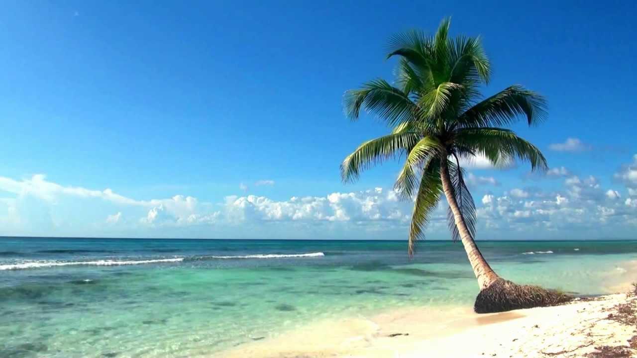 Relaxing Full HD Film Ocean Live Wallpaper Dreamscene 1280x720